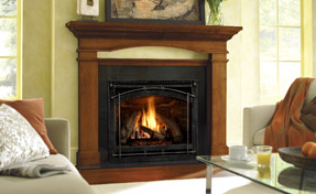 Gas DV - HNG 6000 | Fireplace Grills and More
